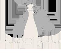 The Art of Bubbles Logo